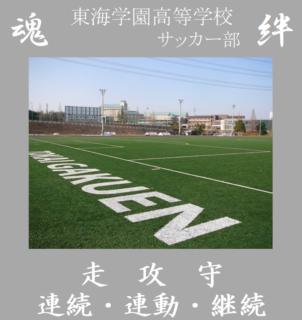 ☆第83回全国高校サッカー選手権 愛知県大会 決勝映像☆